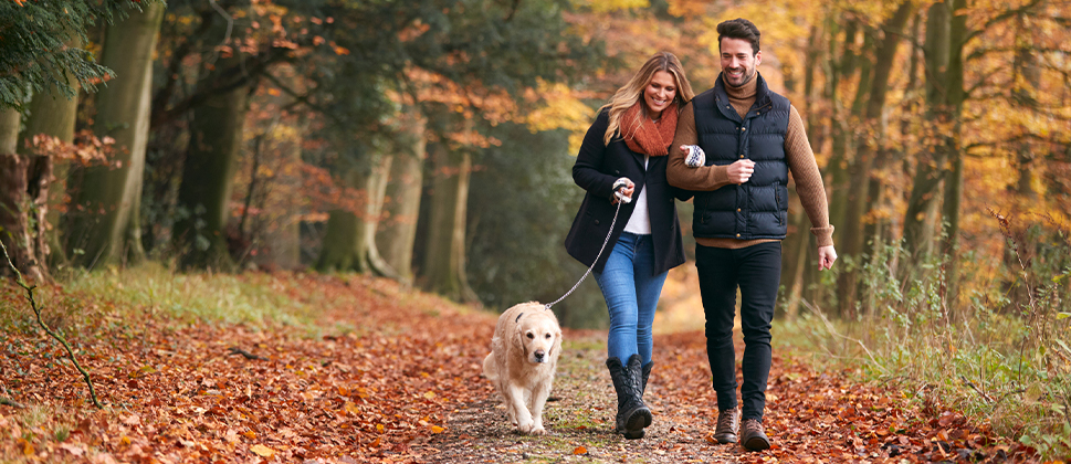 A couple walking their dog, the man is much taller than the woman
