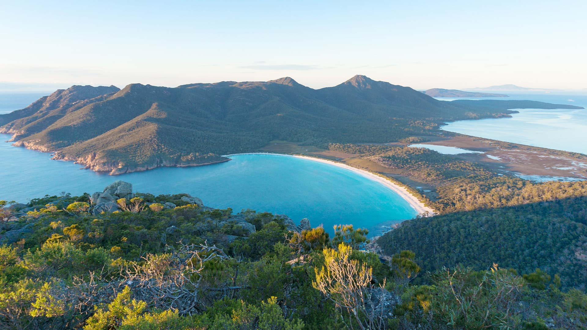Tasmania sign singles up -0 Top 10