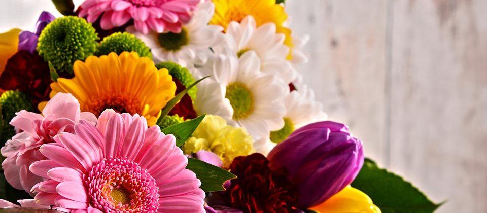 Flowers Bloom & Wild